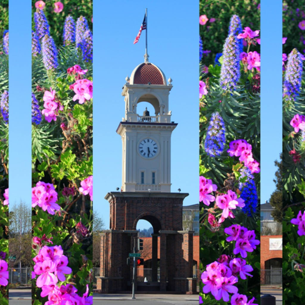Blooming Clock Tower