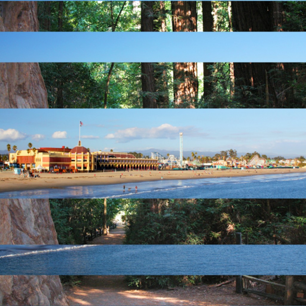 From the Redwoods to the Boardwalk