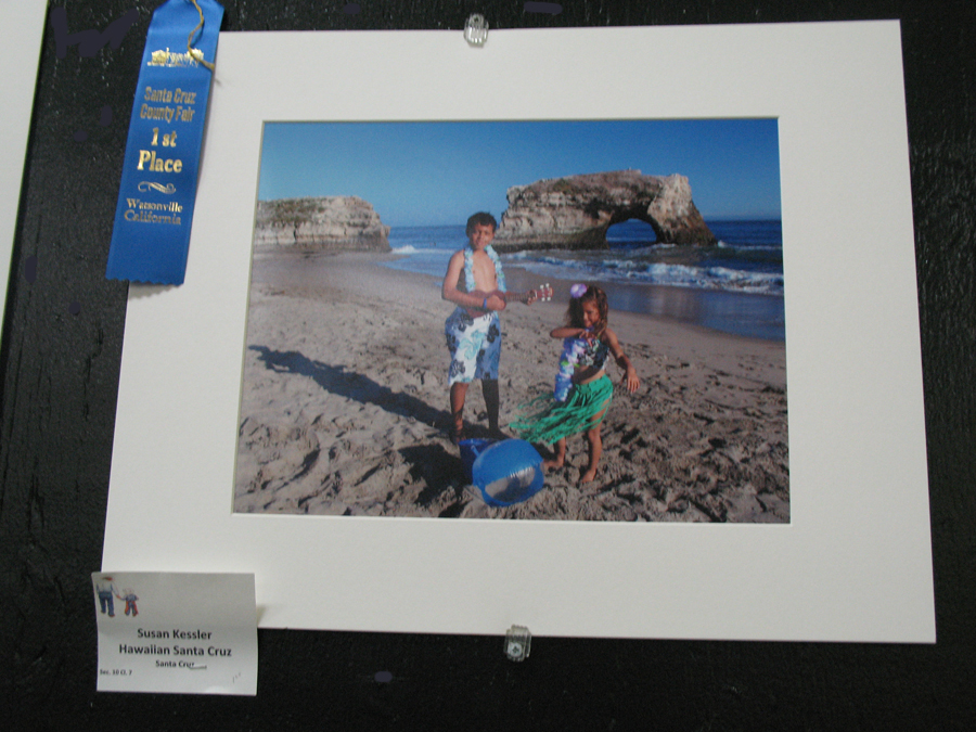 1st Place Hawaiian Santa Cruz photo 72 DPI