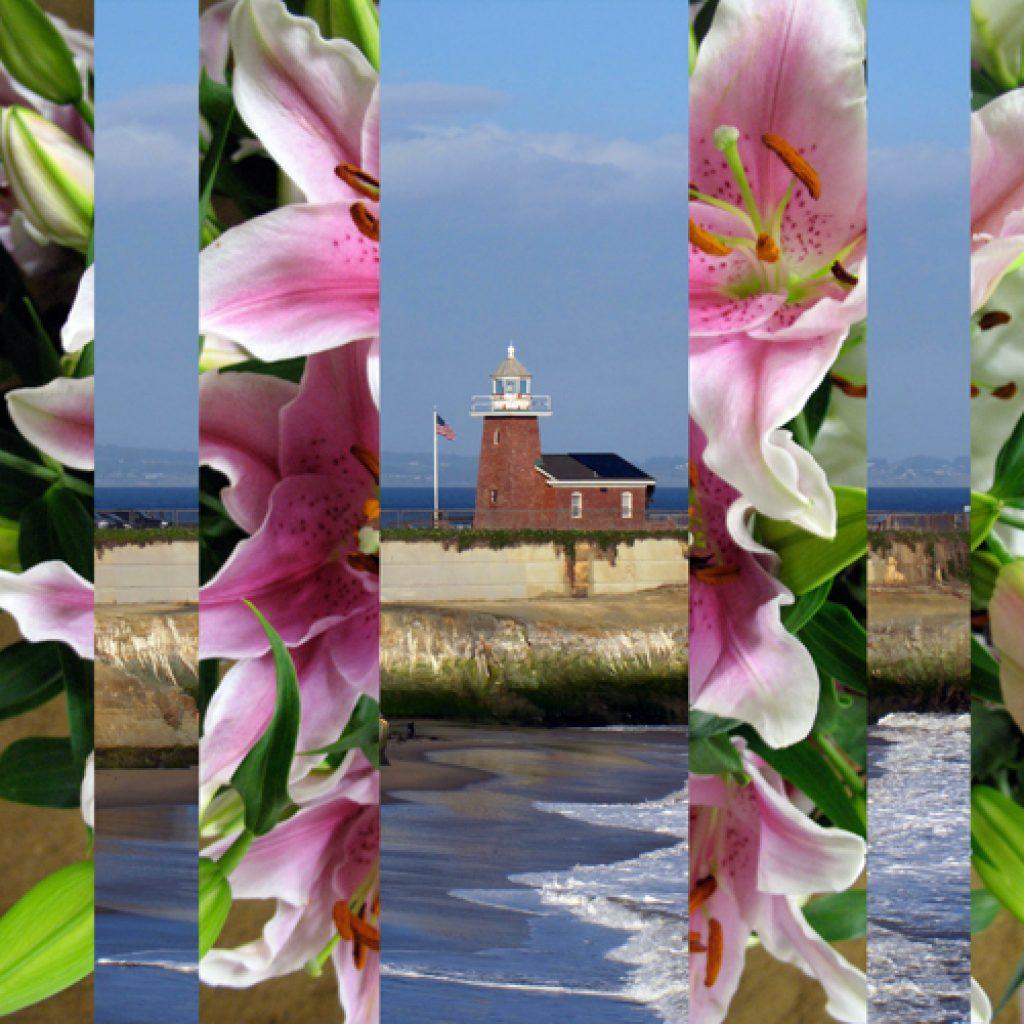 Floral Abbott Lighthouse