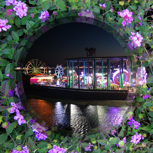 purple-flowered-lit-boardwalk-for-website