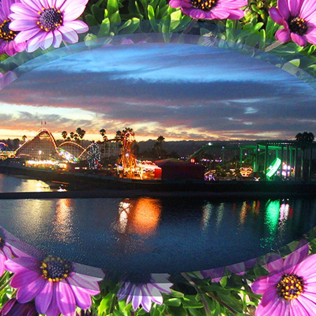 Blooming Lit Boardwalk