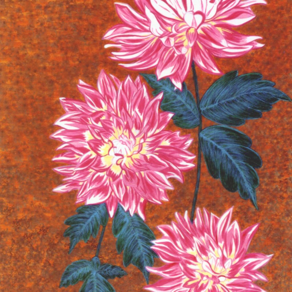 Explosive Pink Flowers