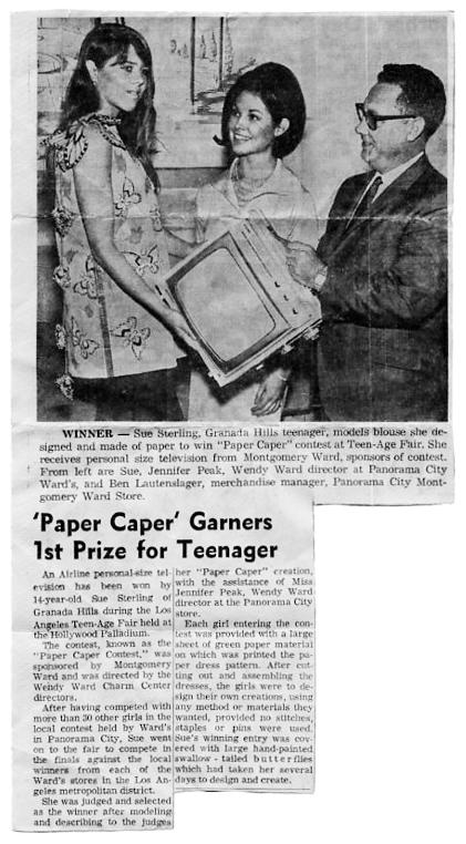 Paper Dress Newspaper Article