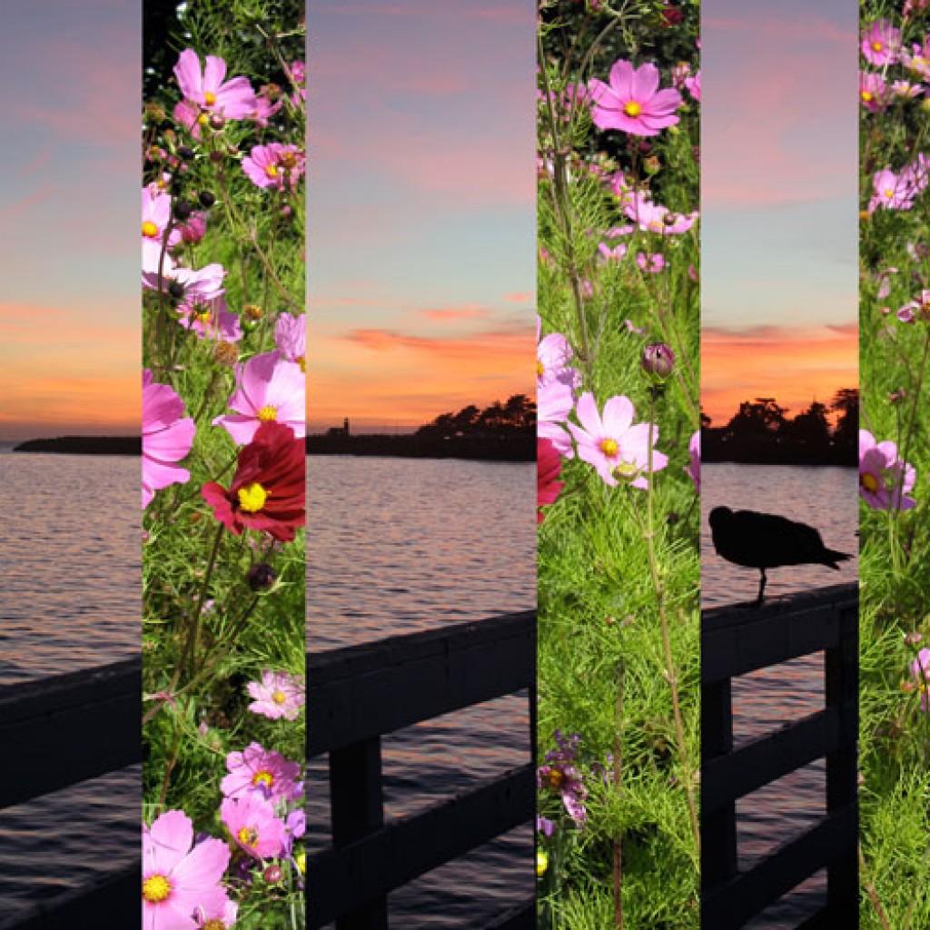 Spring Wharf Sunset