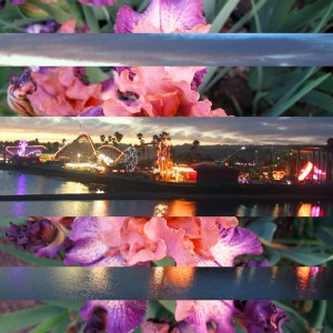 Colorful Evening Boardwalk