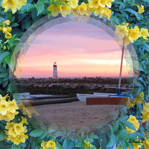 yellow-flowered-sunset-lighthouse-for-website