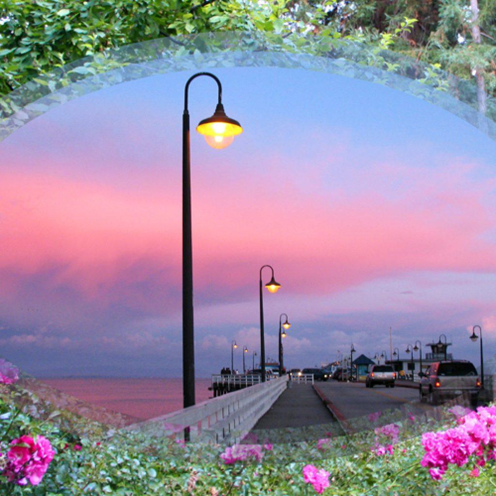 Flowery Redwood Wharf at Dusk