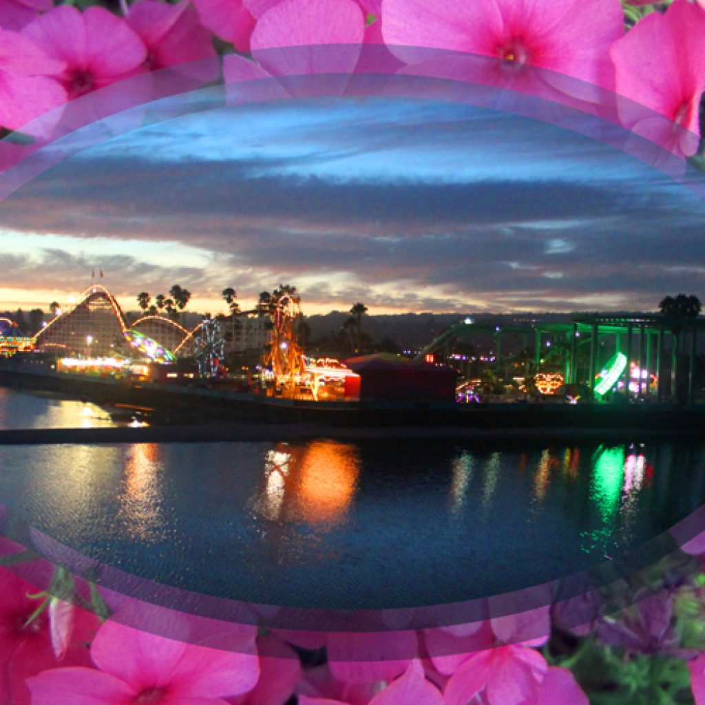 Lit Boardwalk in Pink Flowers